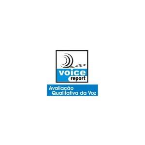 VoiceReport